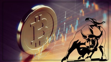 Crypto Trading Bootcamp for Beginners in 2020 - How Does The bitcoin Circuit Assessment Help You Decide Which Currency Trading System is Right For You?