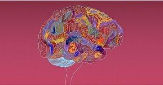 Introduction to Psychopathology - Mental Retardation