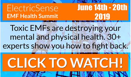 EMF Health Summit 2019