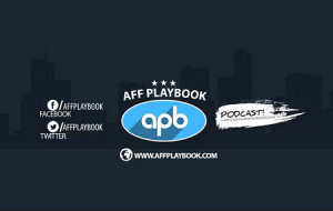 David Ford - Aff Playbook