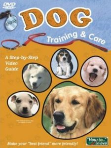 Easy Dog Training & Care