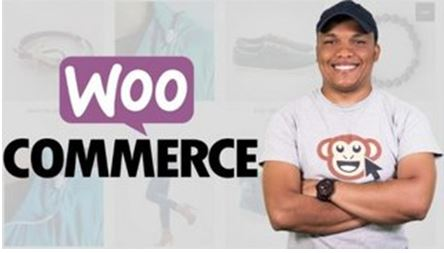 WordPress E-commerce Build Two Stores and a Membership Site