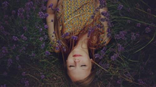 Road to Nirvana Building Blocks of Mindfulness Meditation